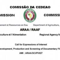 Call for Expressions of Interest Development, Production and Screening of Documentary Films
