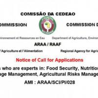 Notice of Call for Applications Short-term Consultants