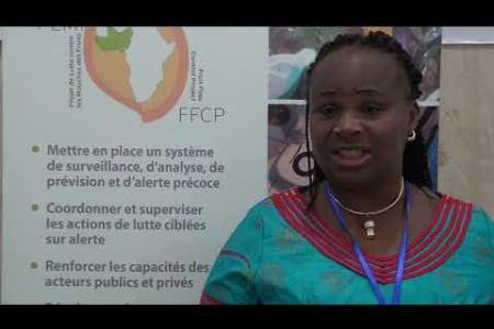 Embedded thumbnail for Atelier de Pérennisation du Système de Surveillance des mouches des fruits