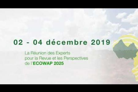 Embedded thumbnail for Réunions de la Cedeao à Conakry du 2 au 12 décembre 2019