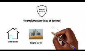 Embedded thumbnail for Regional Food Security Storage Strategy