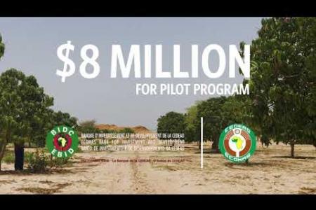 Embedded thumbnail for Initiative de l'Afrique de l'Ouest pour une agriculture intelligente face au climat (Waicsa)